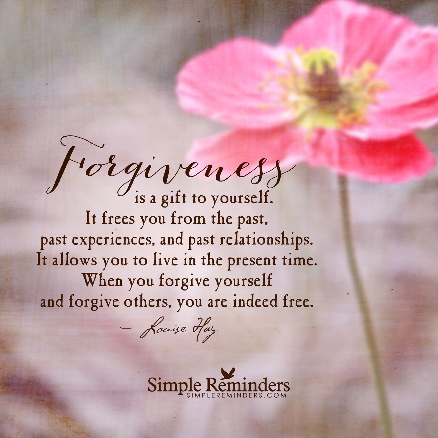 louise-hay-forgiveness-is-gift.jpg