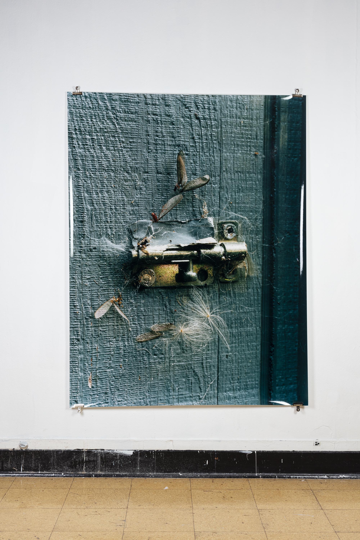 Antoine Midant    Eureka, CA , 50 in x 64 in, C-Print.