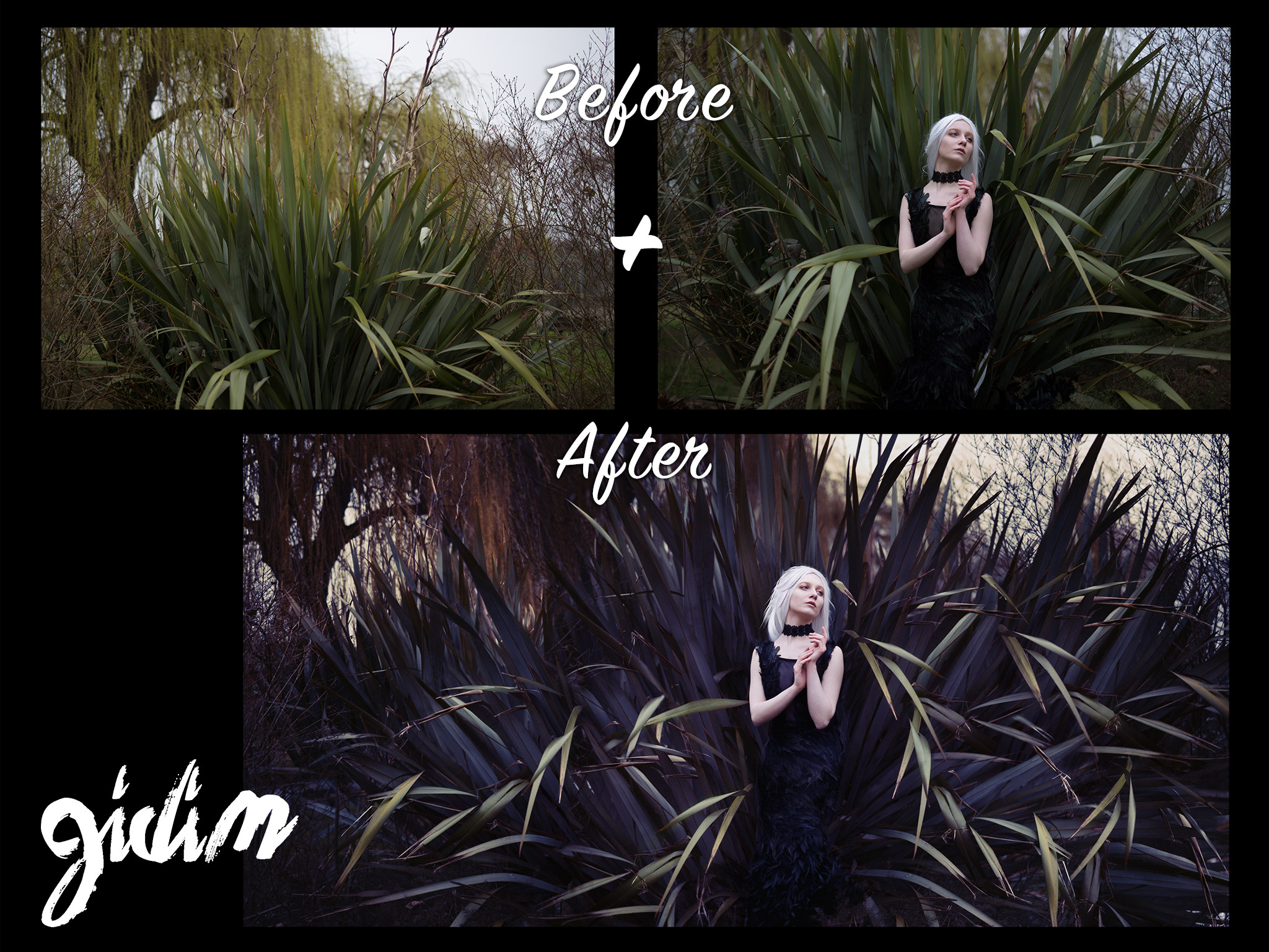 before/ after from  Gidi Meir Morris Photography