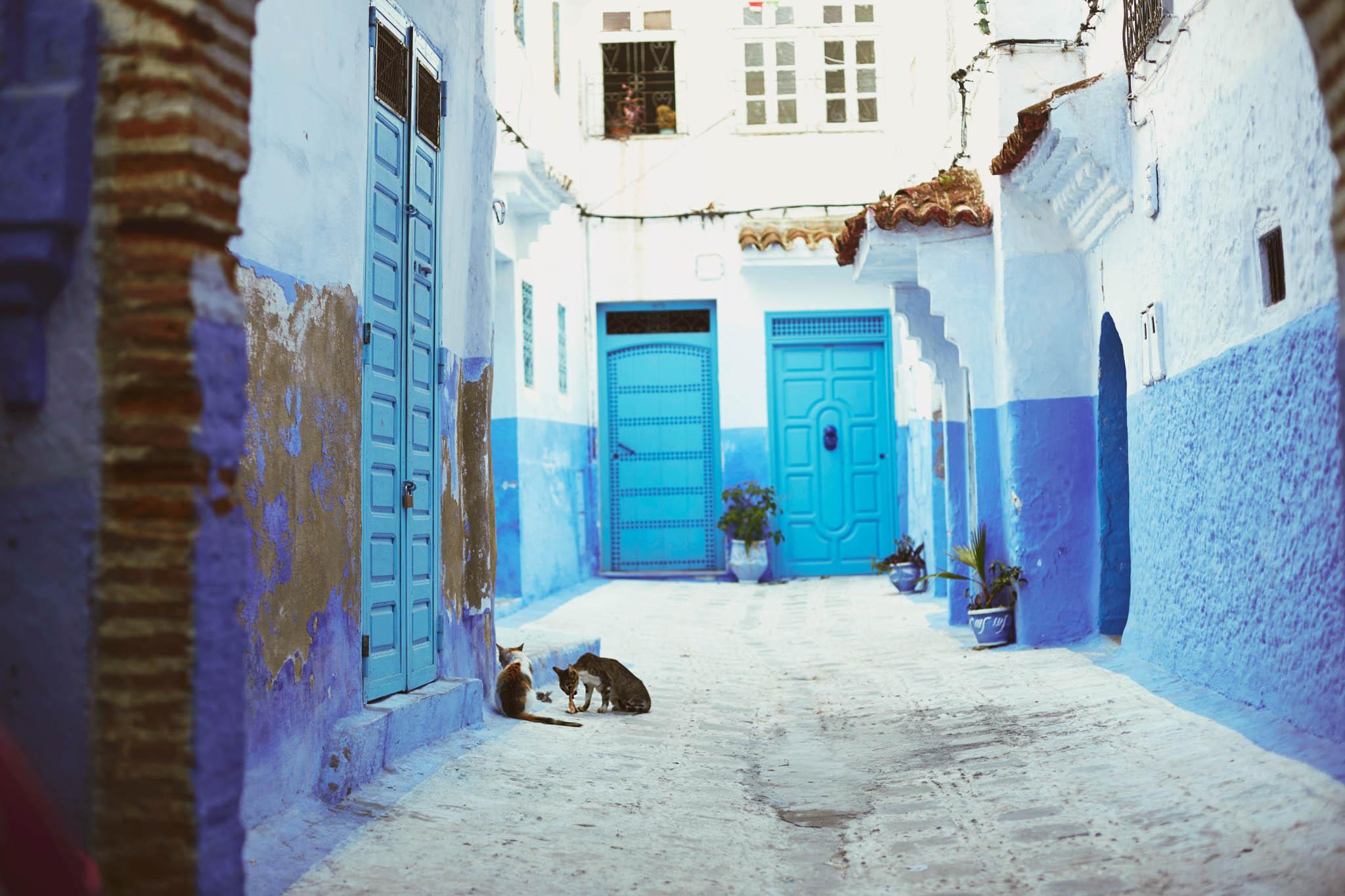 morocco (210 of 258).jpg