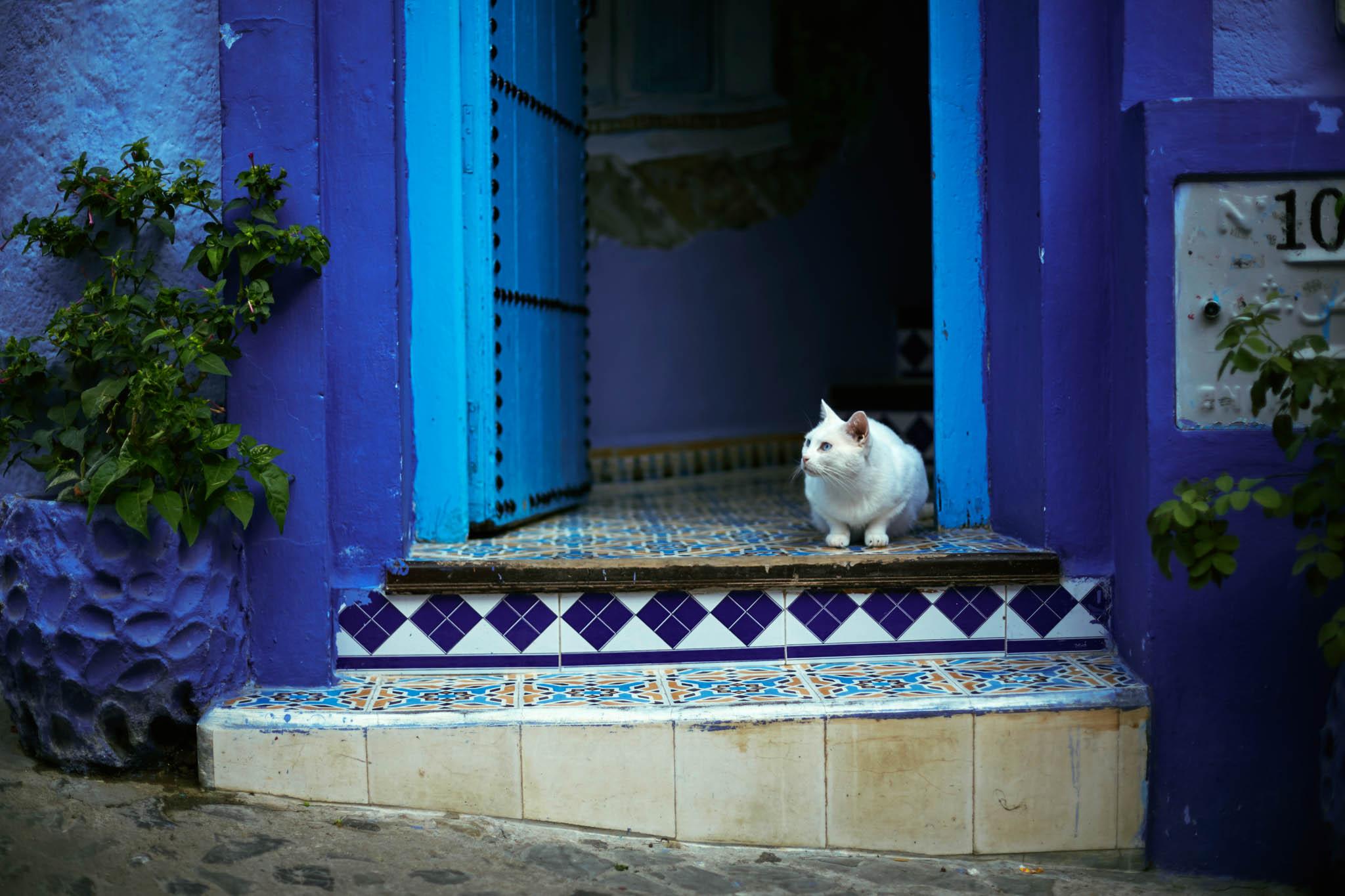morocco (222 of 258).jpg