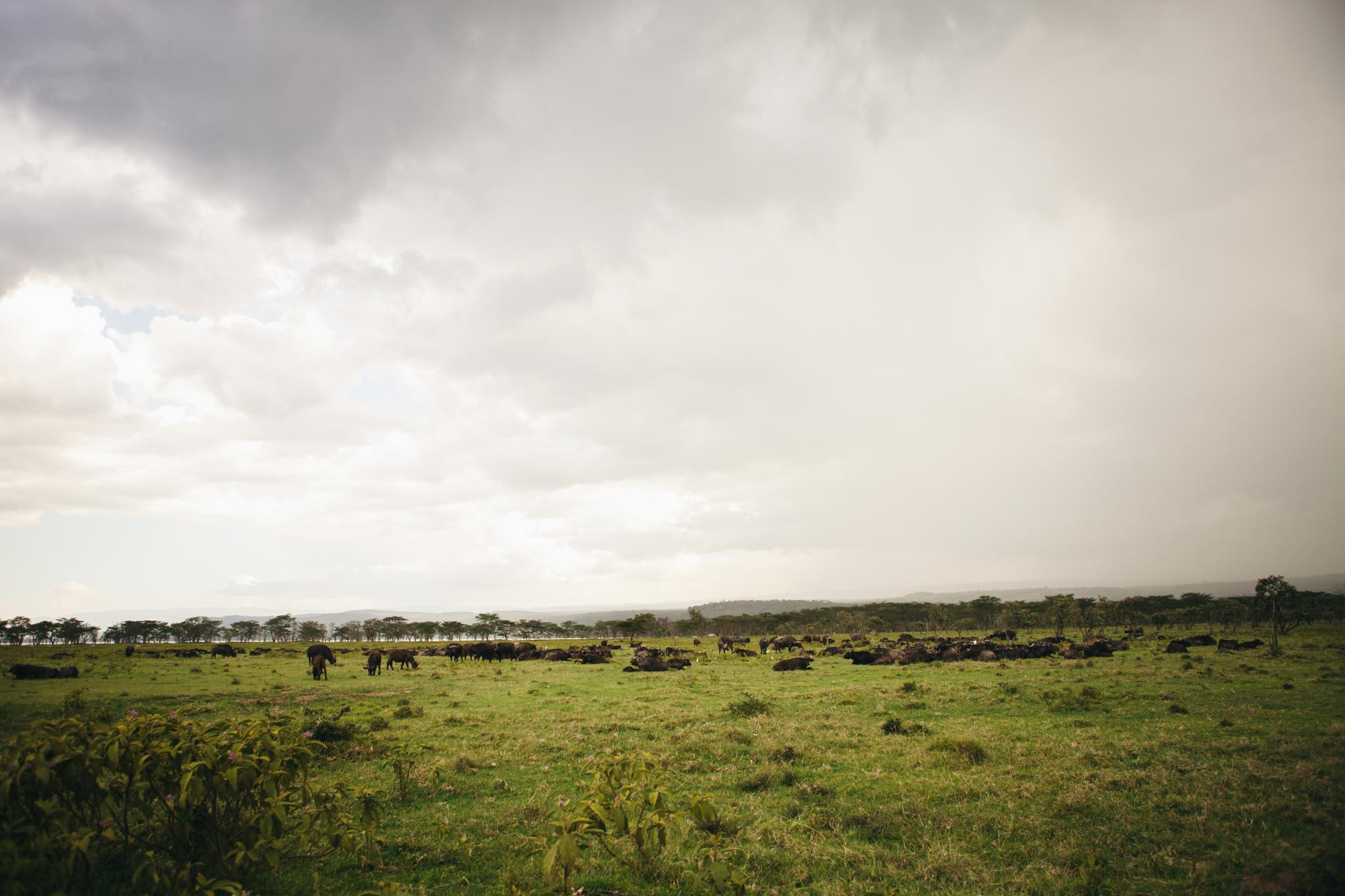 Kenya-22.jpg