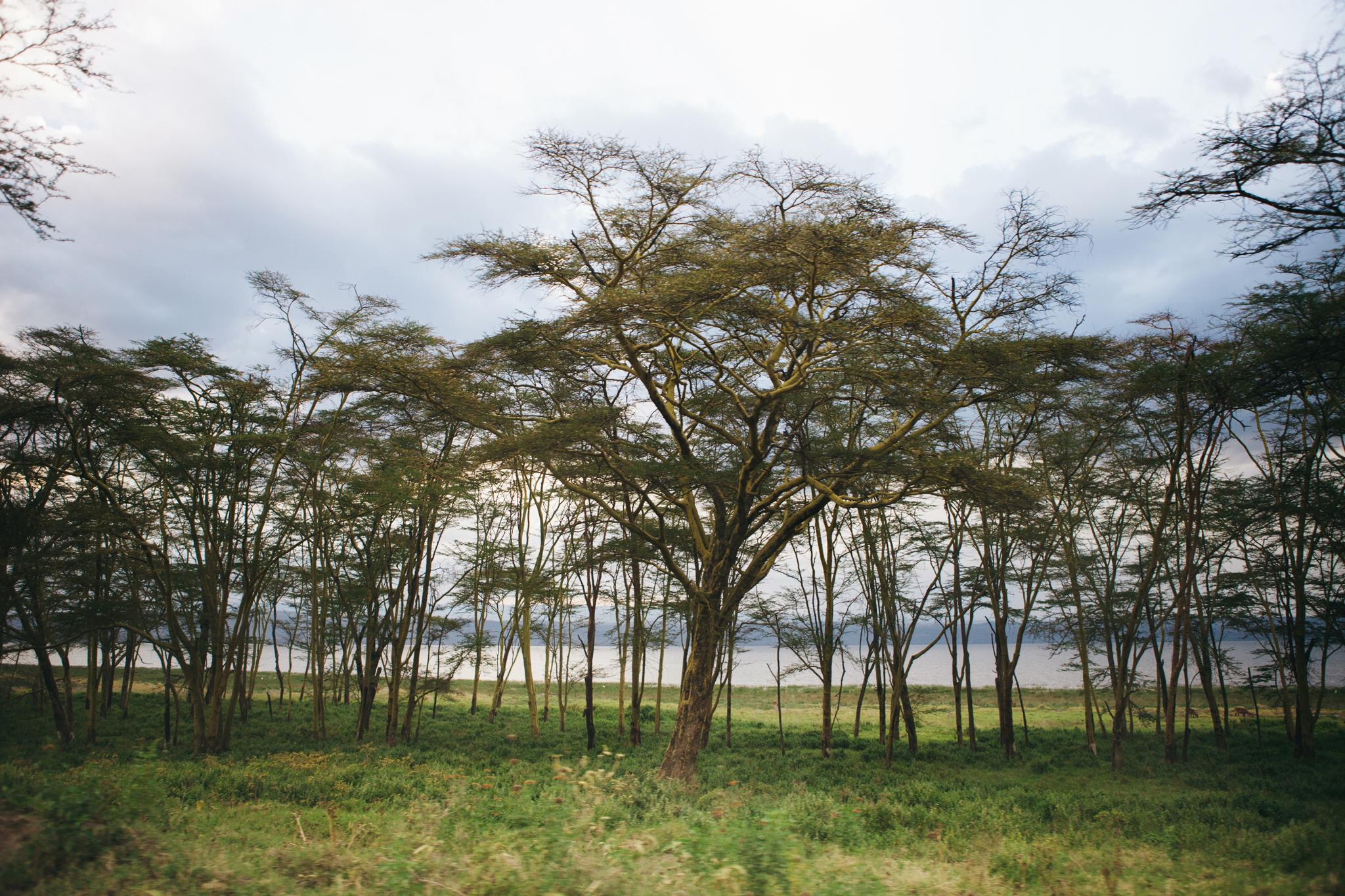 Kenya-35.jpg