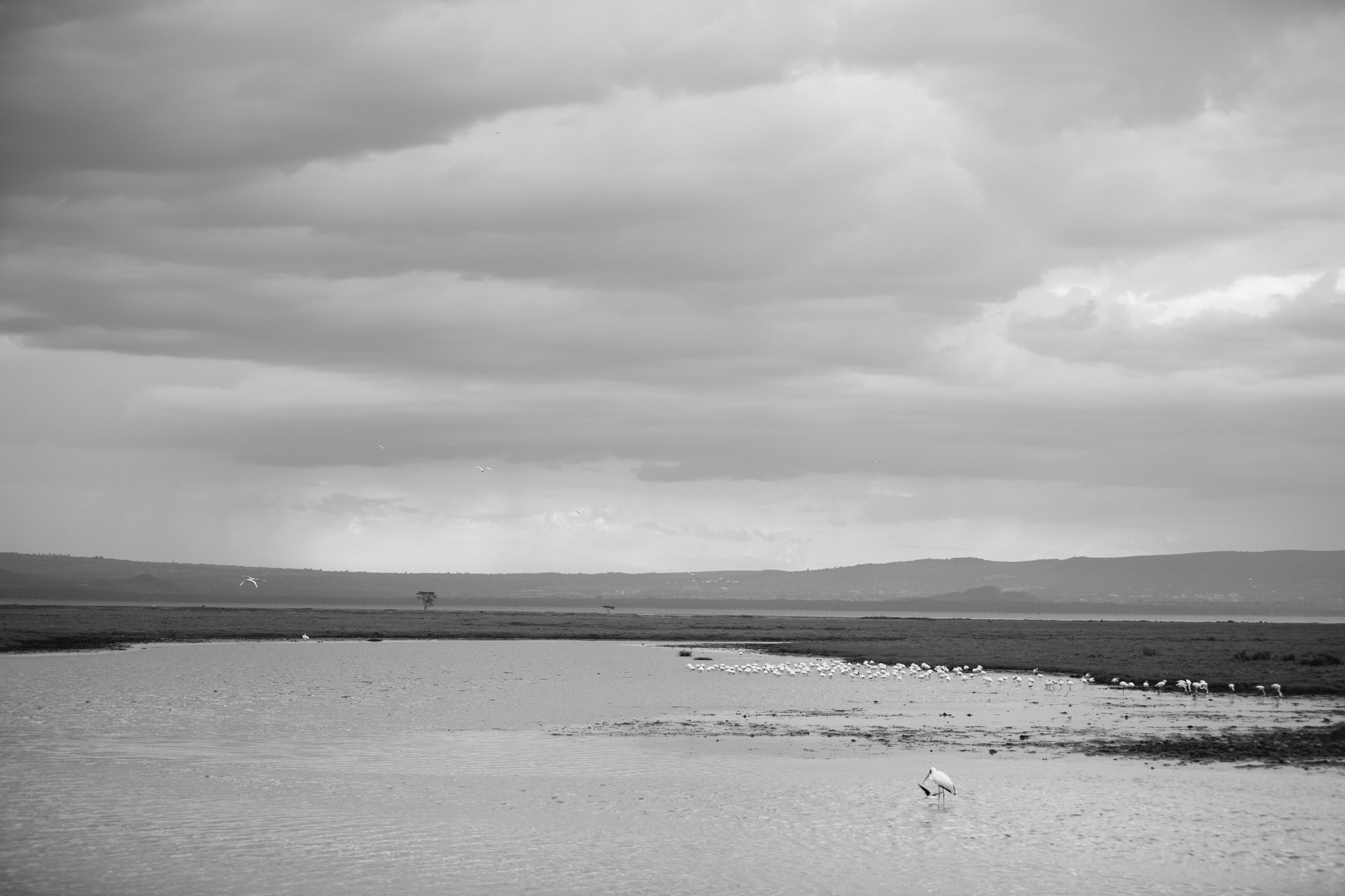 Kenya-40.jpg
