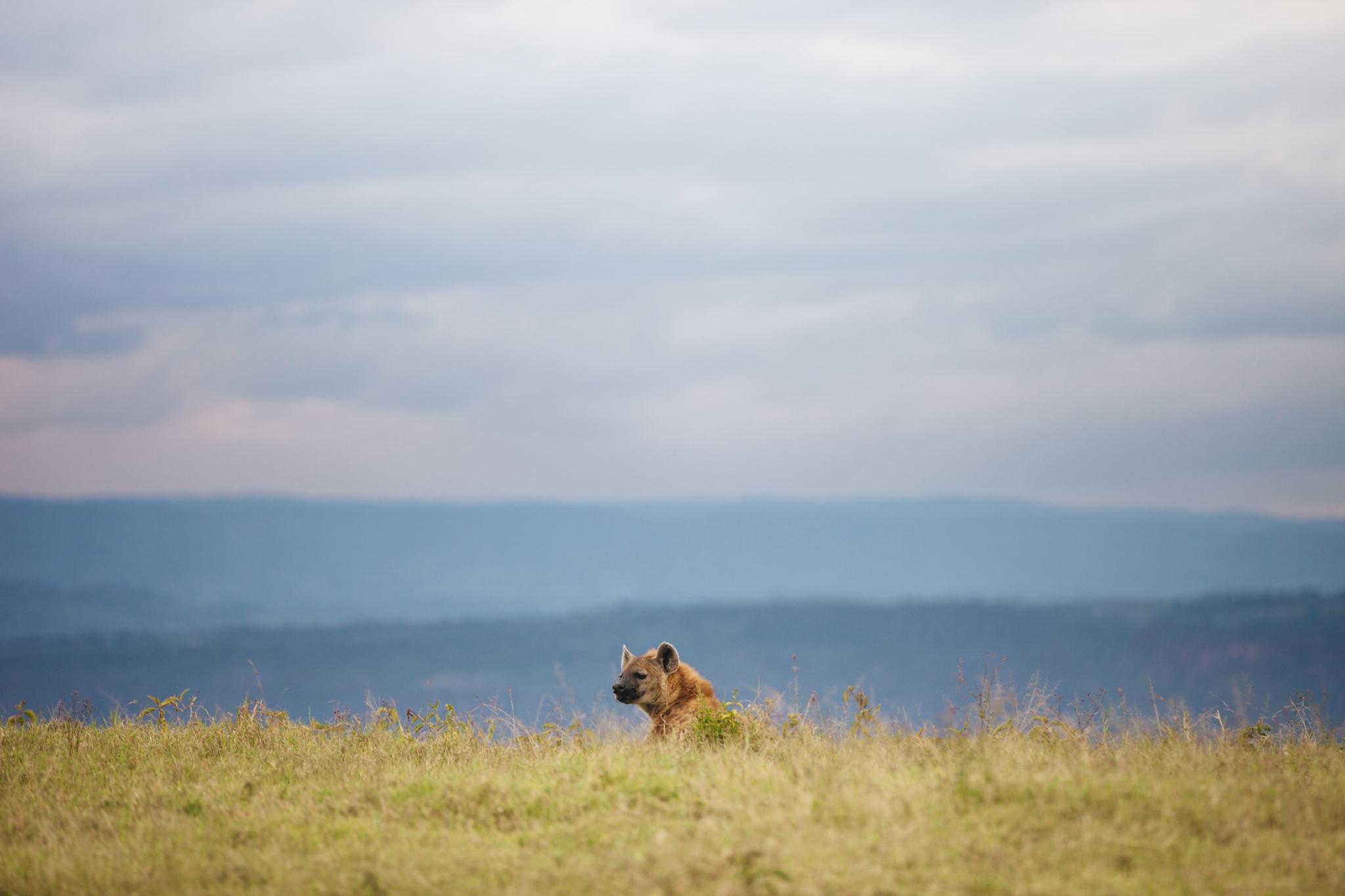 Kenya-50.jpg