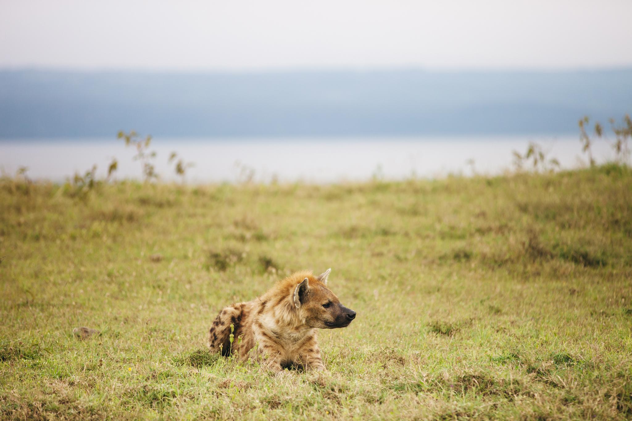Kenya-51.jpg