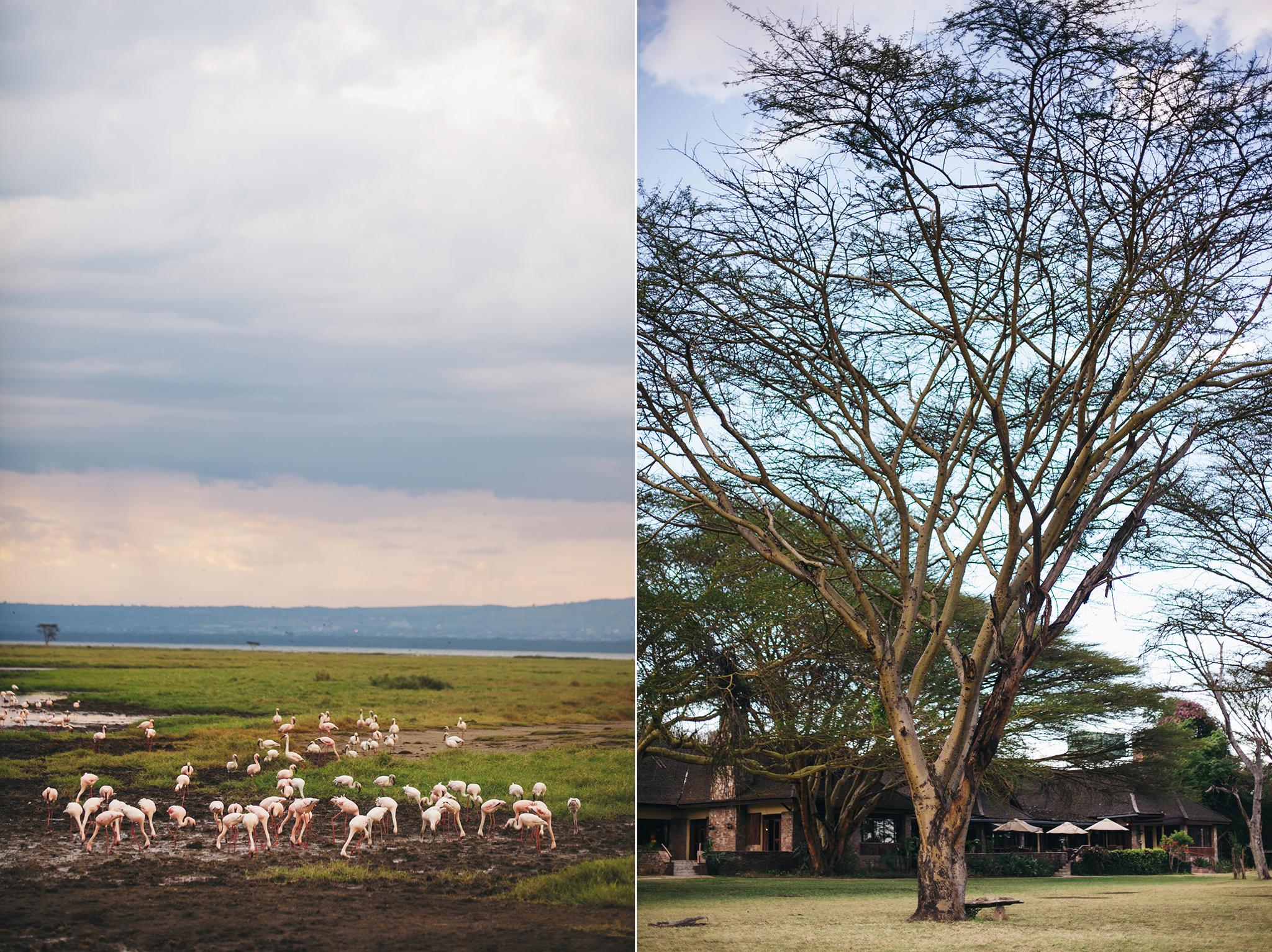 Kenya-49.jpg