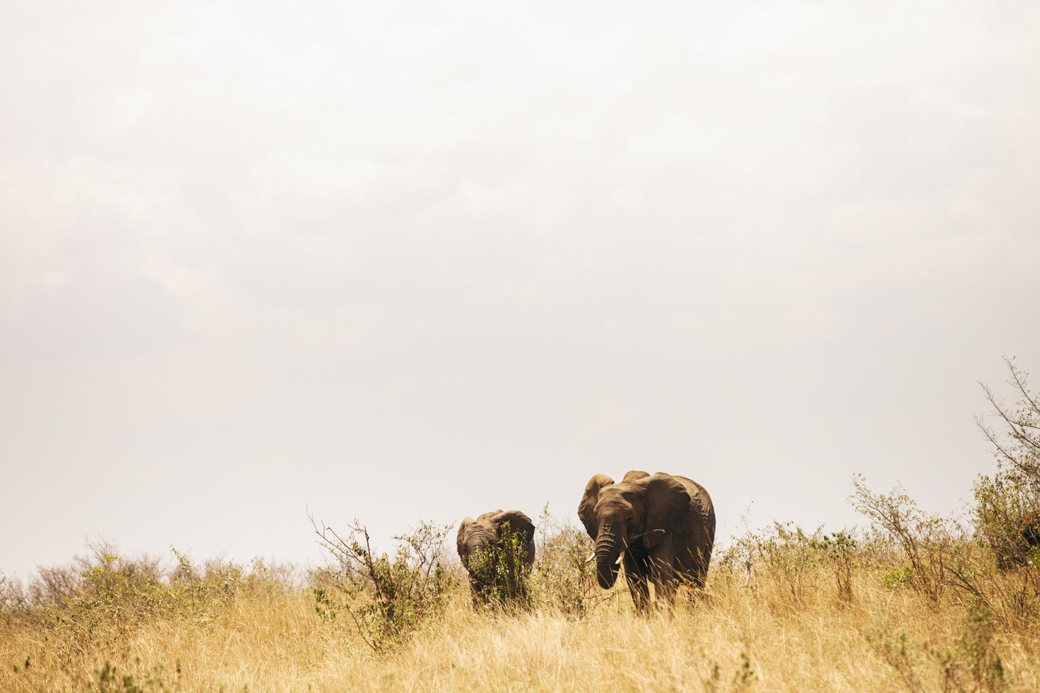 Kenya-64.jpg