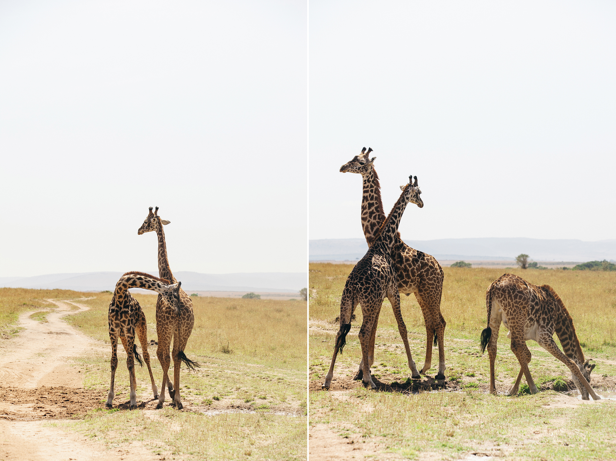 Kenya-101.jpg