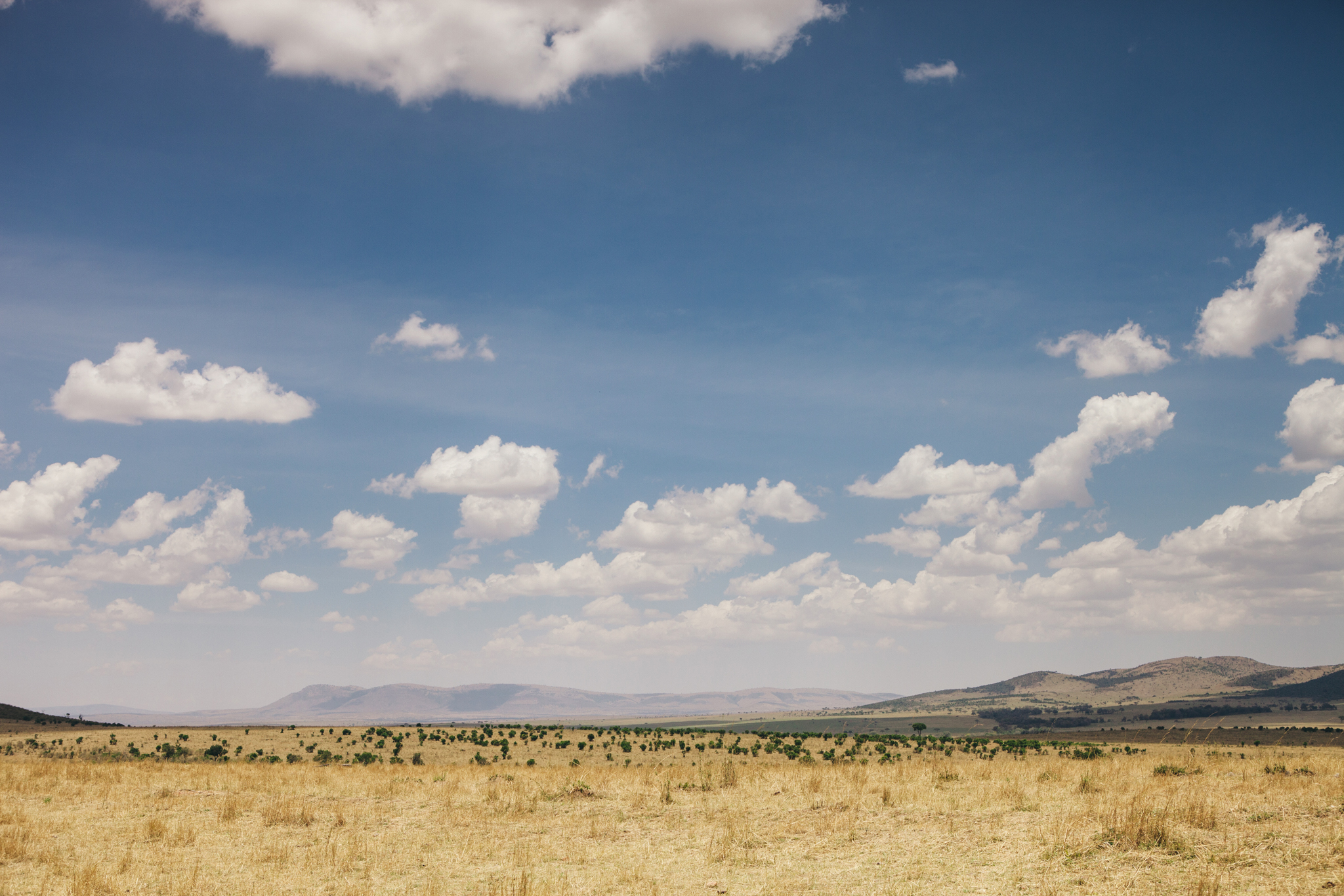 Kenya-138.jpg