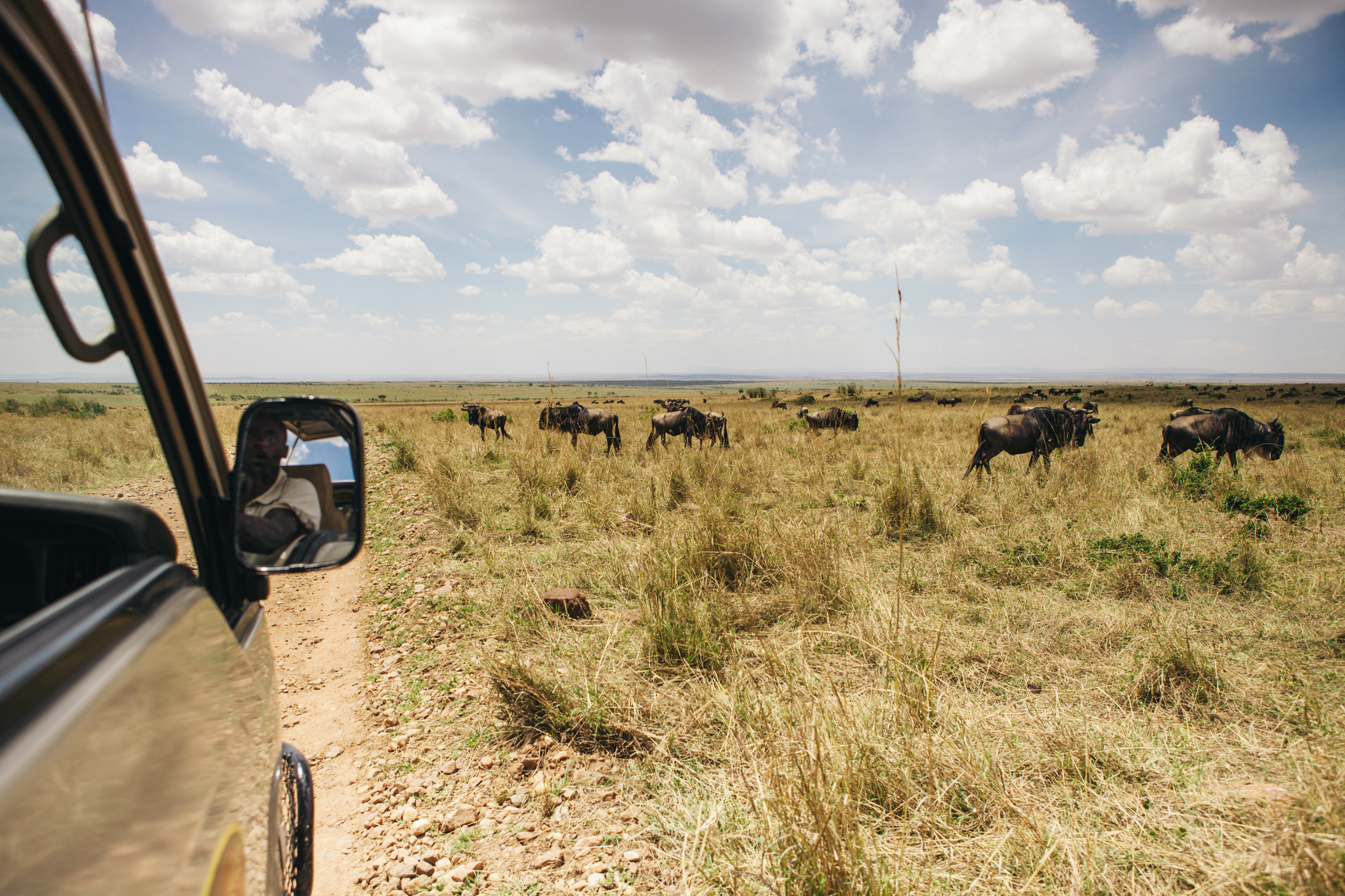 We were so fortunate to be there for wildebeest season!