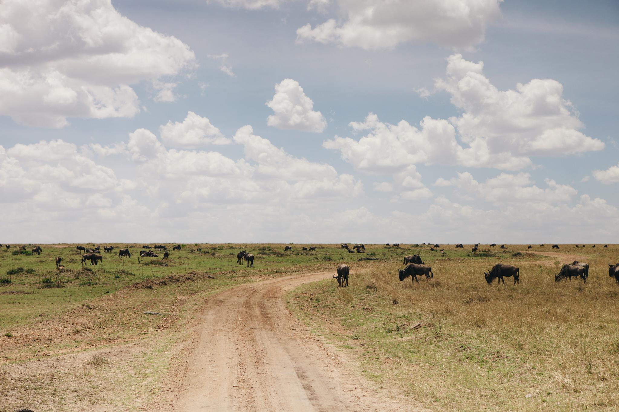 Kenya-143.jpg