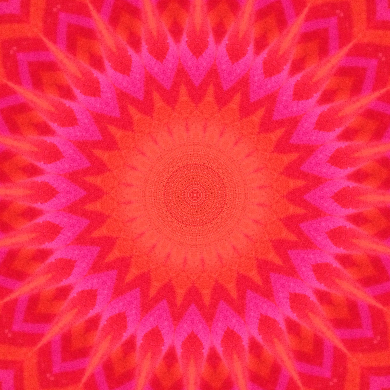 The original photo, put through the kaleidoscope app on my phone.