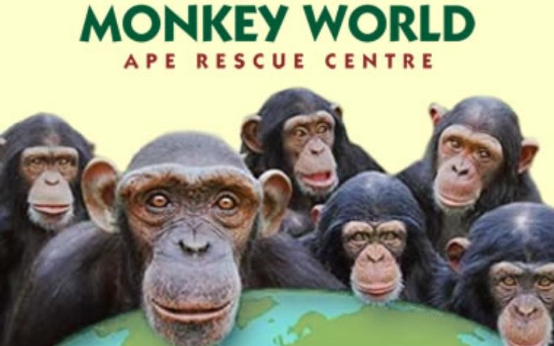 Monkey_World.jpg