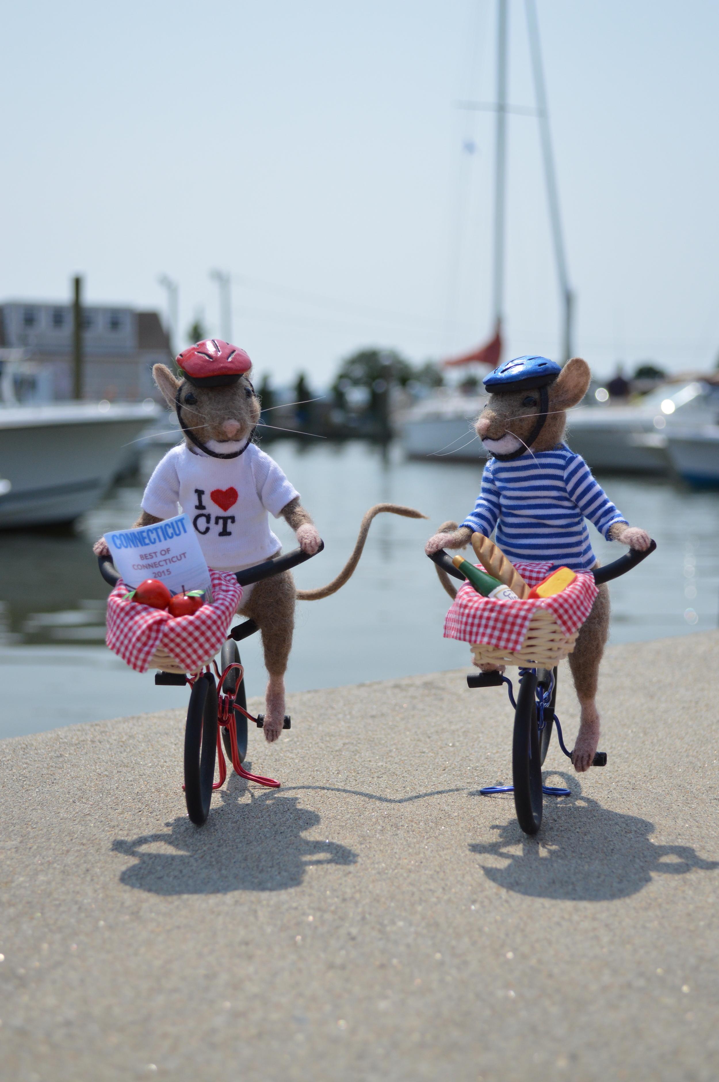 A Bike Ride in Connecticut