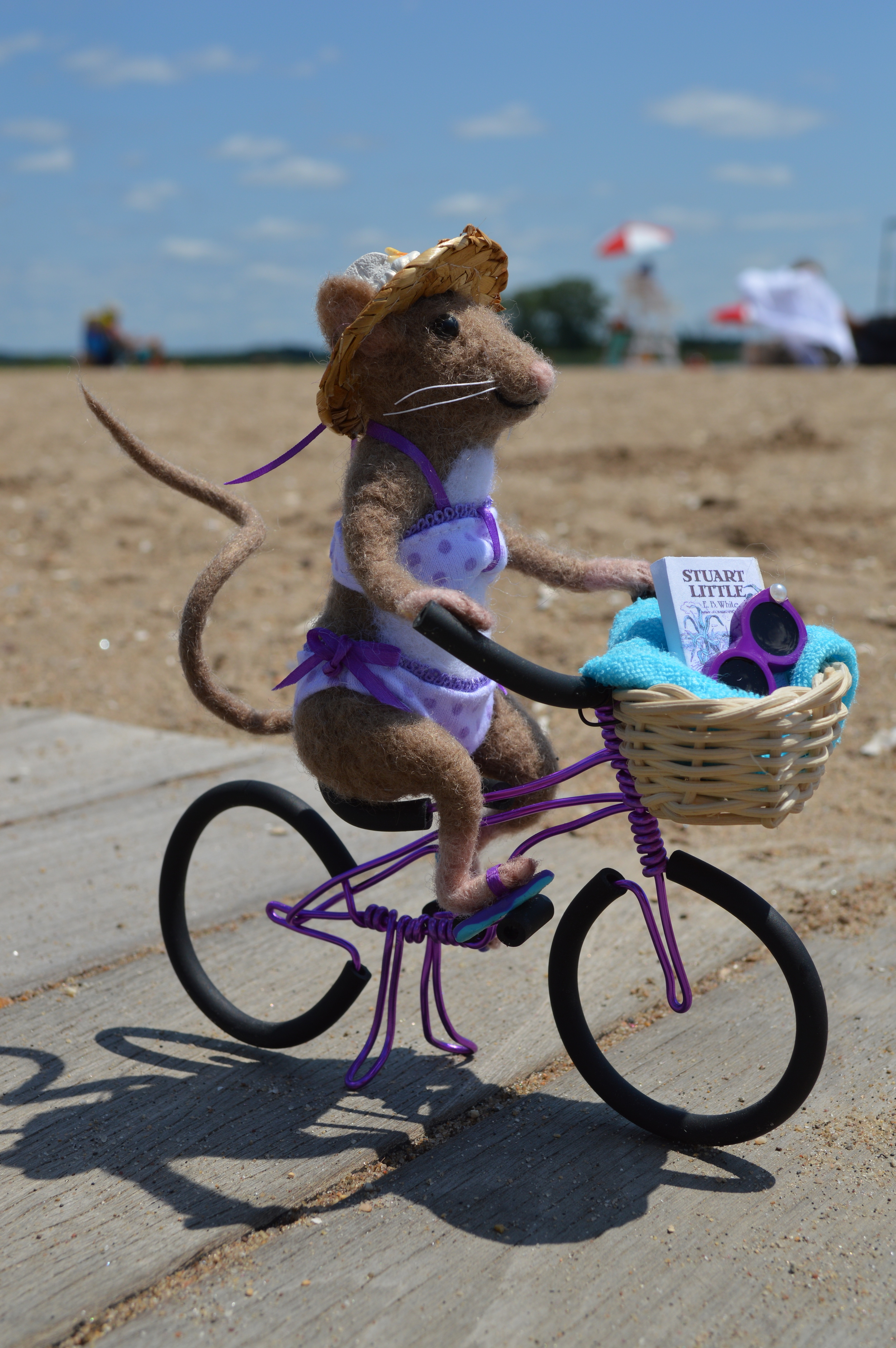 Sandy Mouse at the Beach