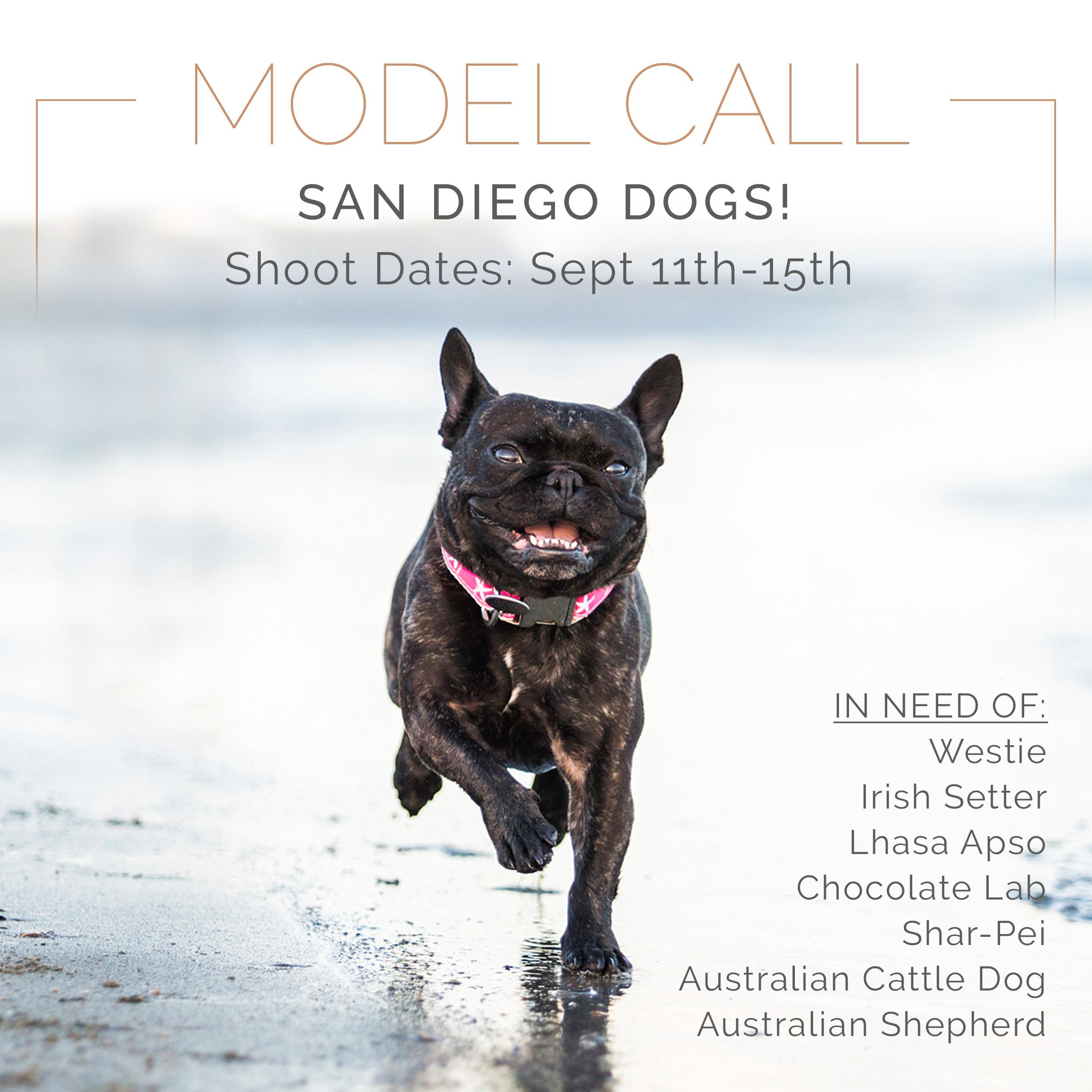 ModelCall_SanDiego.jpg
