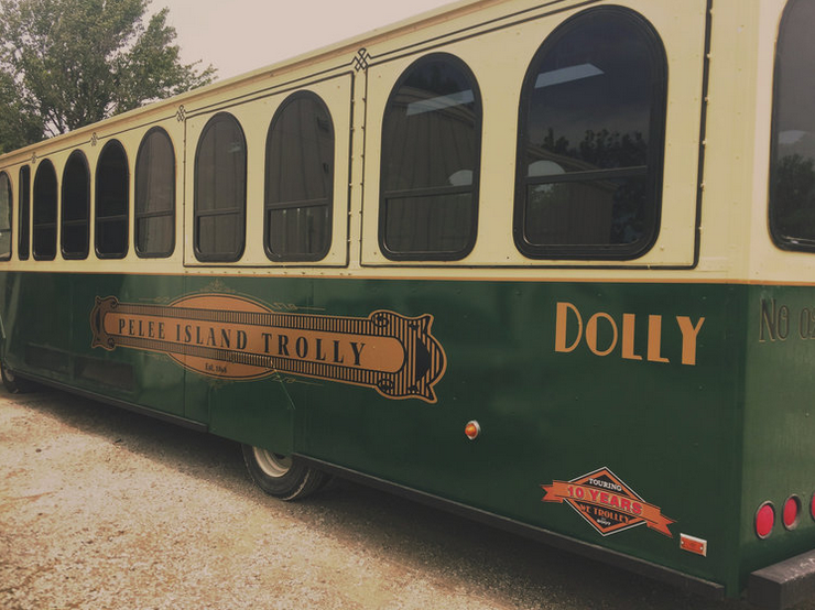 Dolly The Trolley.png