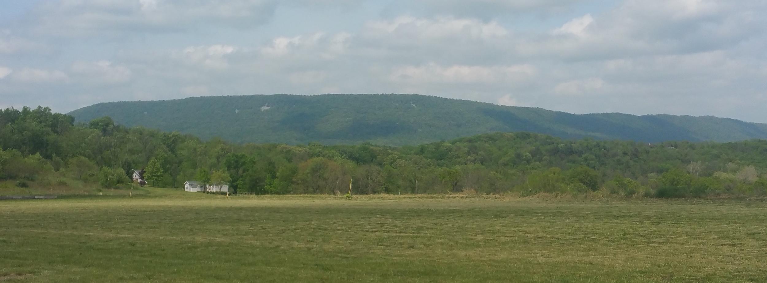 Backdrop of Blue Mountain Range