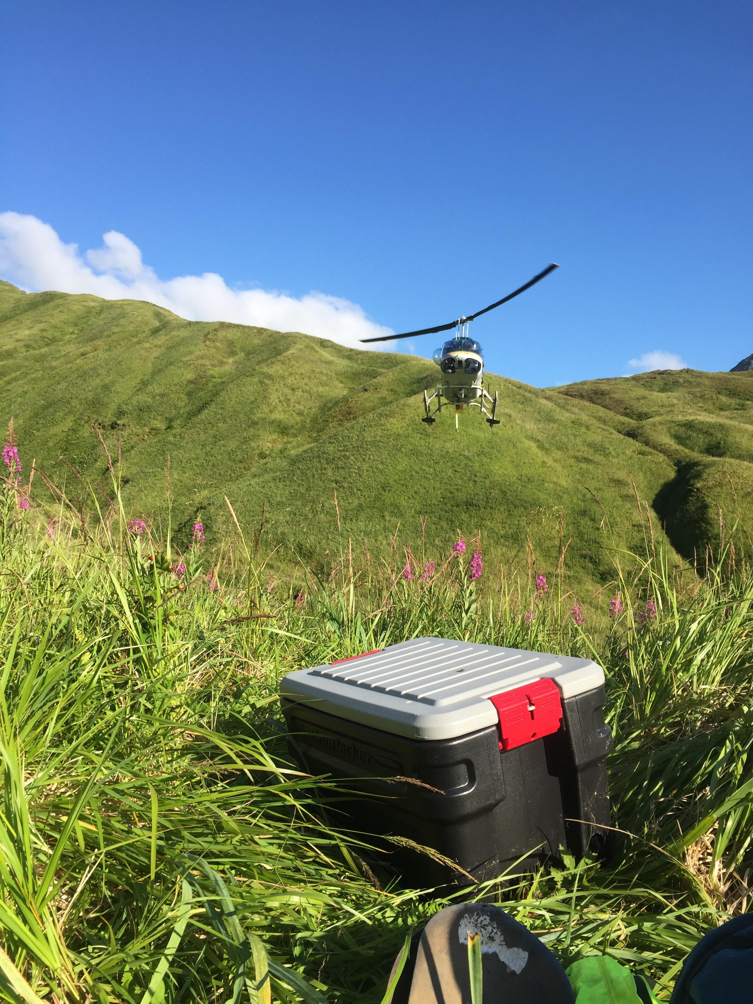 Unalaska Island, AK, USA - Seismic array retrieval  - July 2016