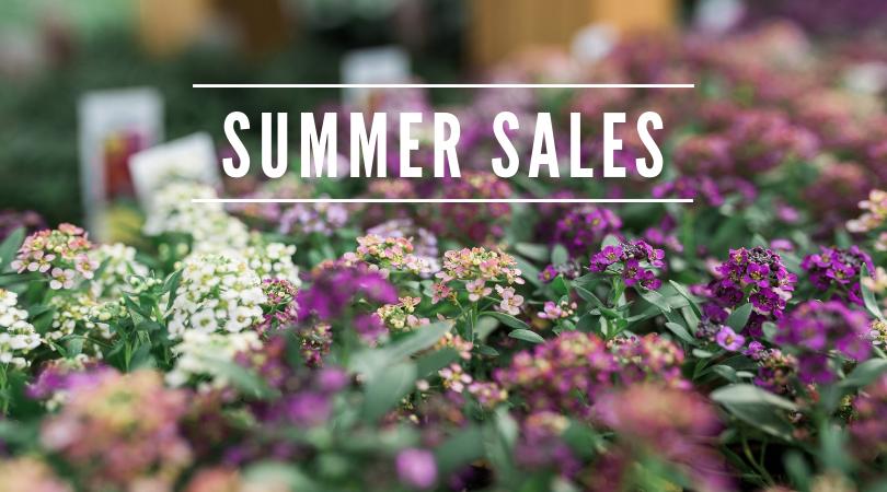 Summer Sales.png