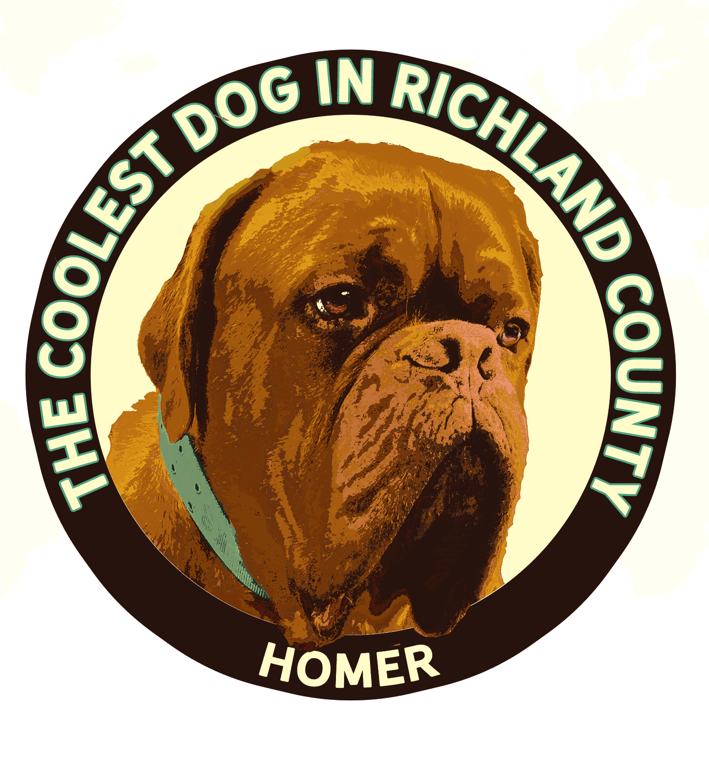 HOMER a French Mastiff, the same breed as Hooch, from Turner and Hooch, was voted the Coolest Dog in Richland County.