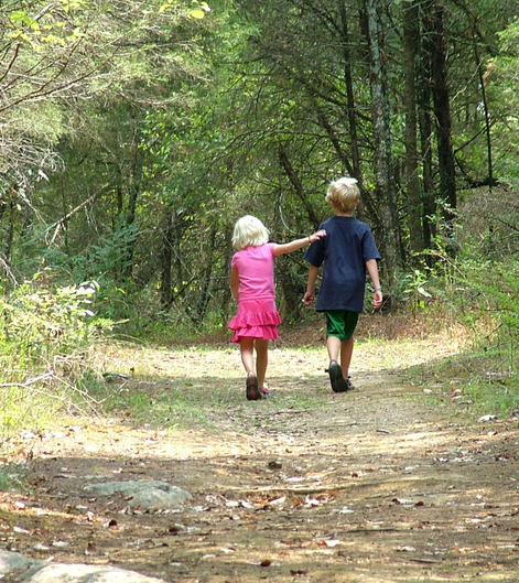 brother-and-sister-walk-in-woods-1-1431880-639x733.jpg