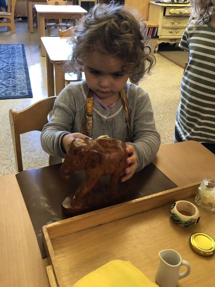 A three-year-old student uses the wood polishing work to help keep her classroom looking beautiful (direct purpose). The indirect purpose is to prepare her for writing: strengthening the hand, sequencing the steps in the process, and working toward increased level of concentration through repetition.