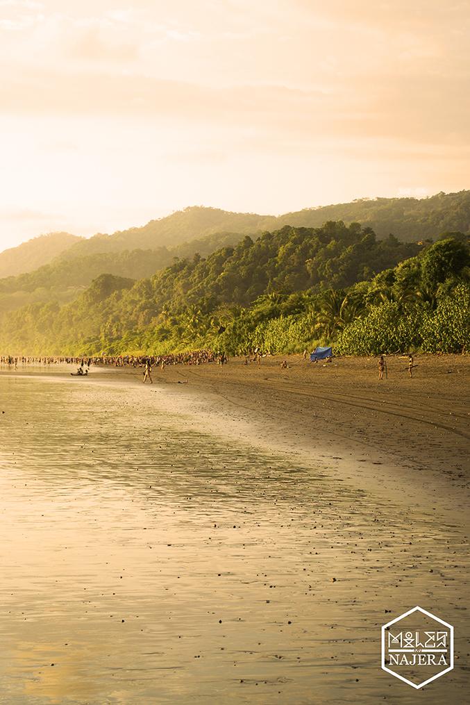 Beachparty.jpg