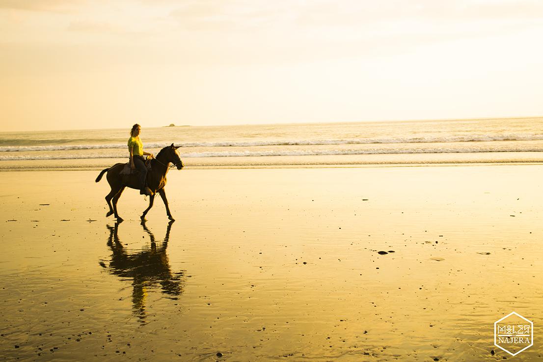beach Horse.jpg