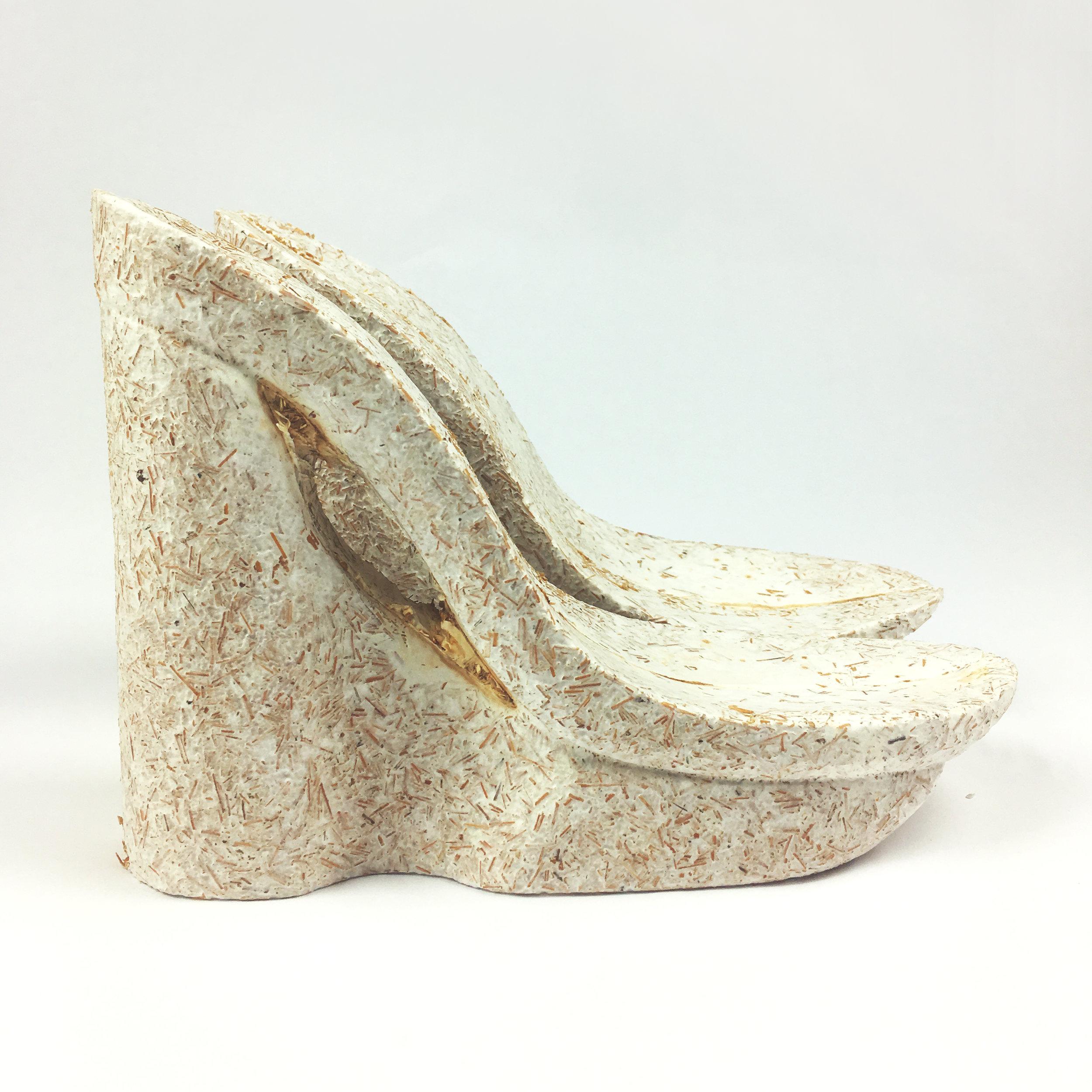 shoe_done.jpg