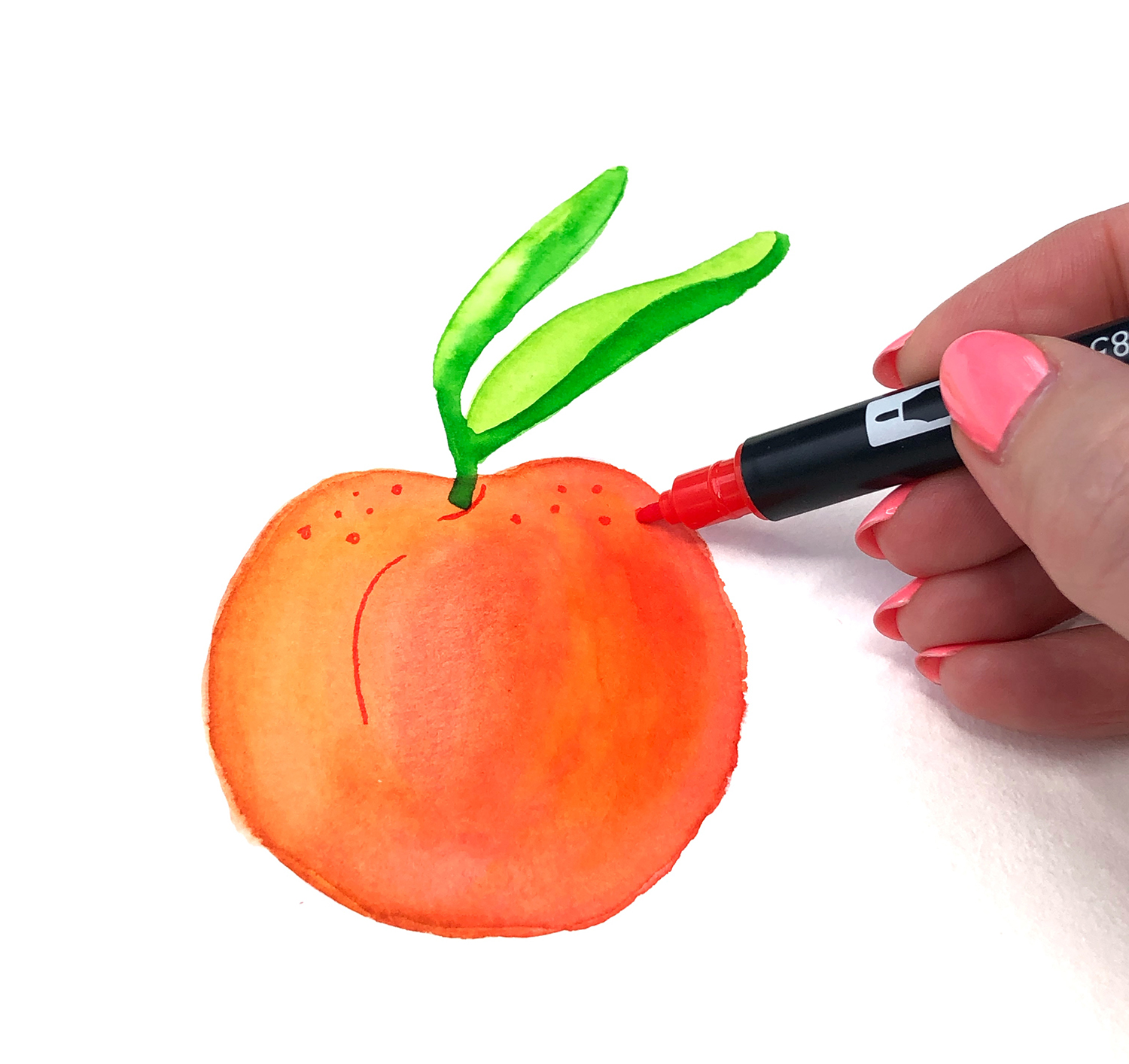 Paint a Watercolor Peach with Markers. By Jessica Mack of BrownPaperBunny.