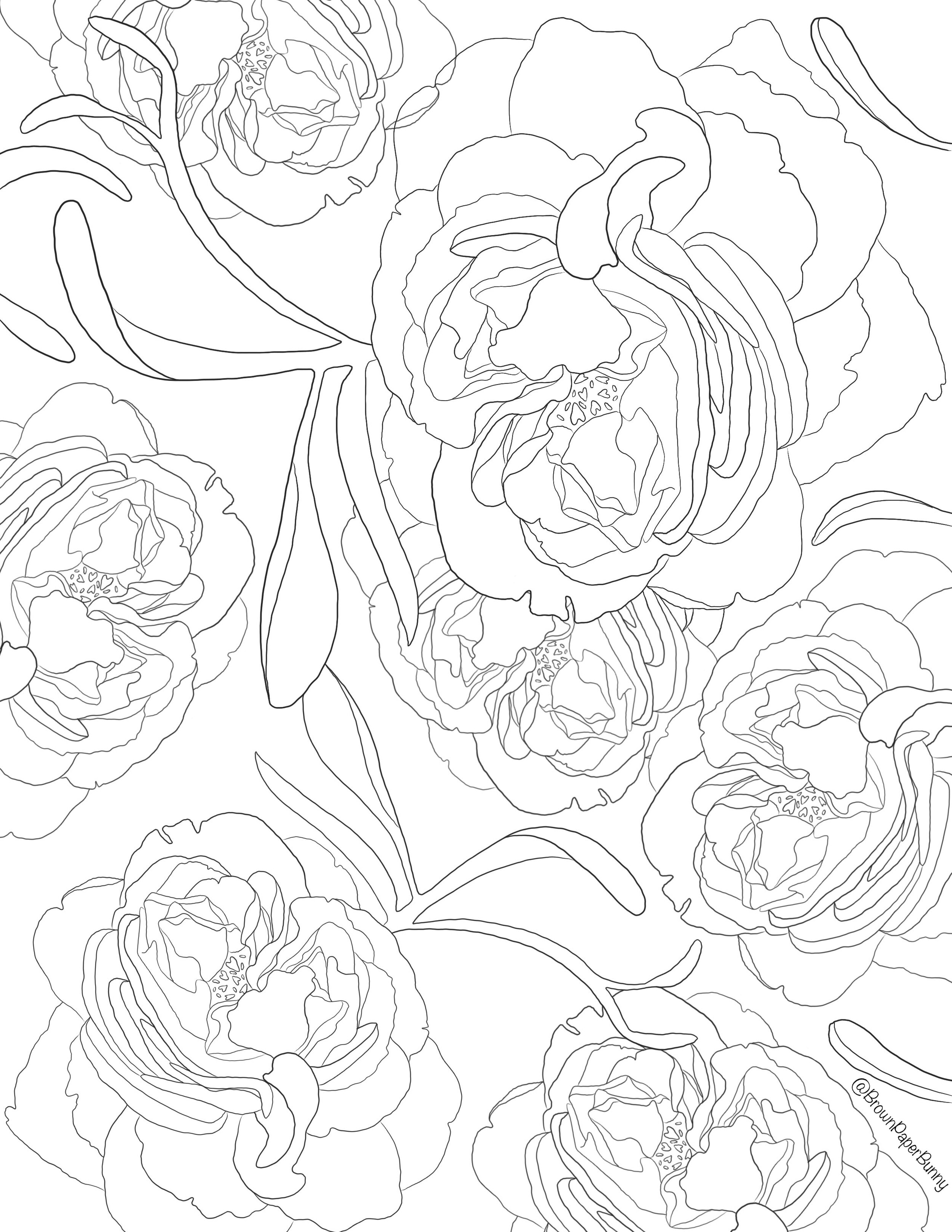 Free Coloring Pages Flowers Brown Paper Bunny Studio