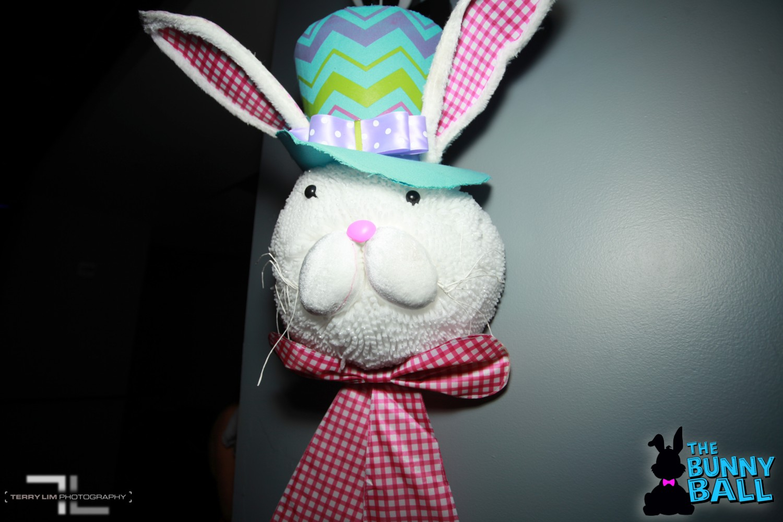 IMG_4309-19-Bunny-Ball-2019-Terry-Lim-Photo.jpg