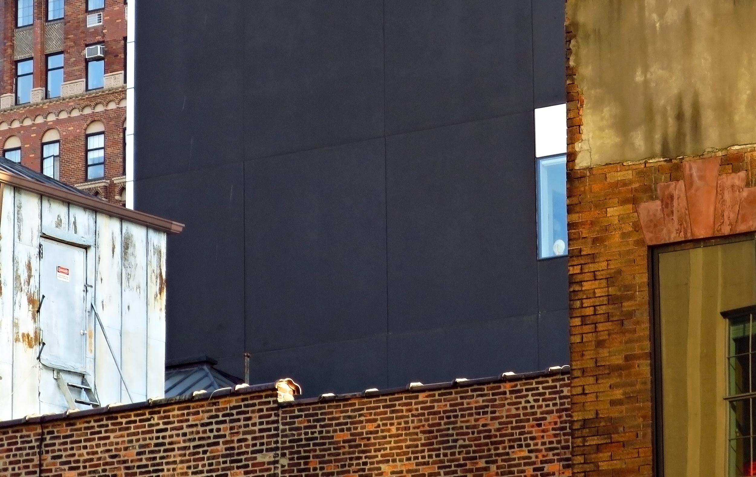 facade top bldgs hi line NYC.jpg