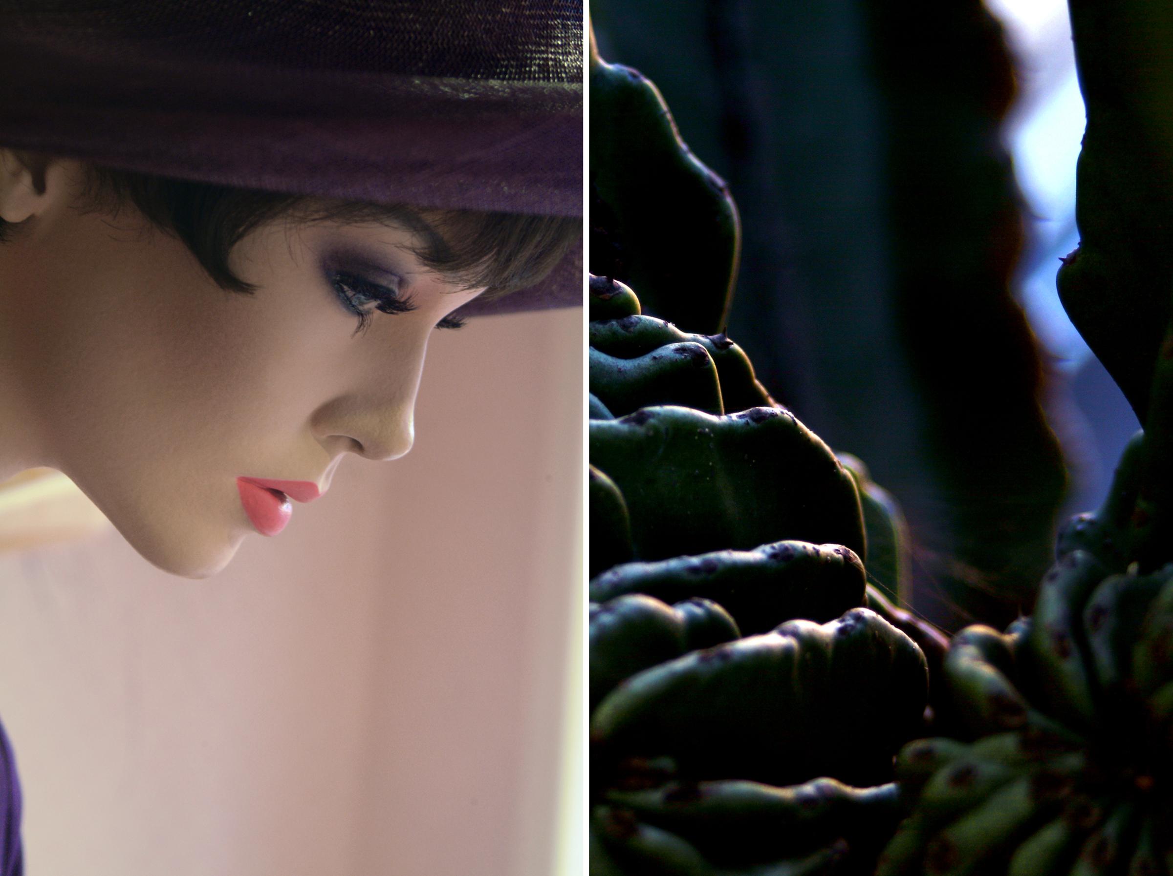 Diptych 34 purple hat and cactus flesh.jpg