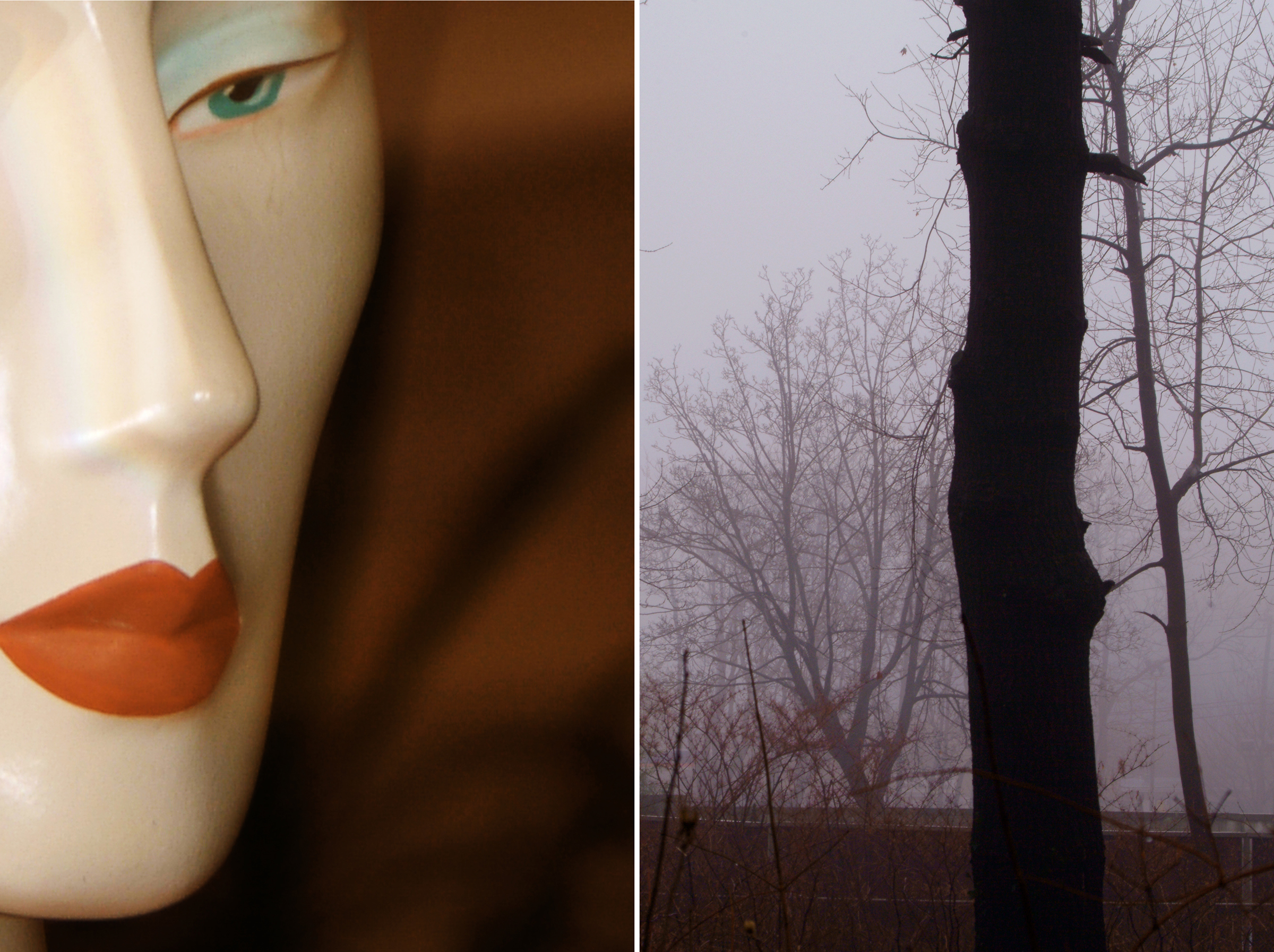 Diptych 7 sculpted and dead tree.jpg
