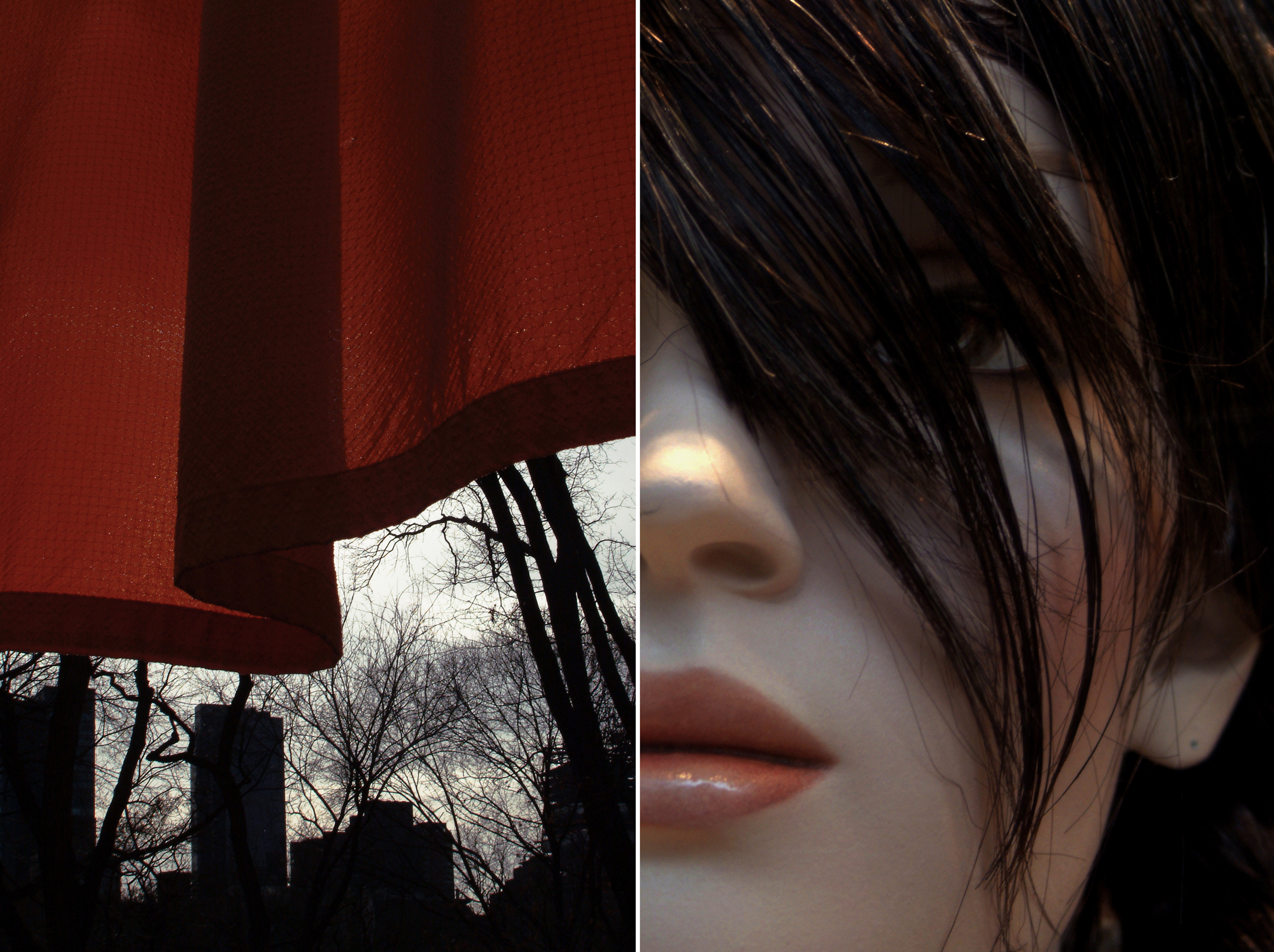 Diptych 5 bangs and curtain.jpg
