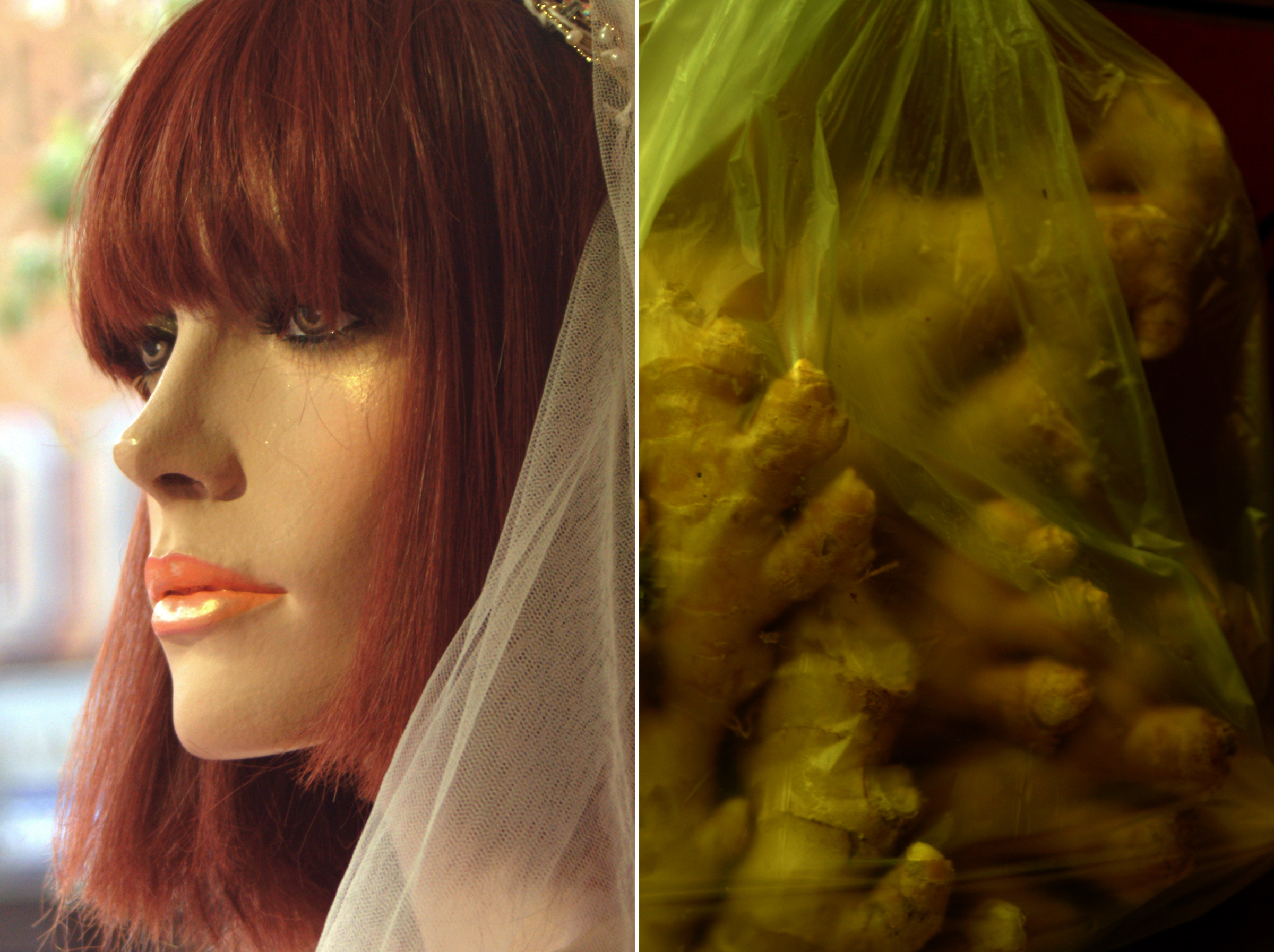 Diptych 29 diadem and ginger root.jpg