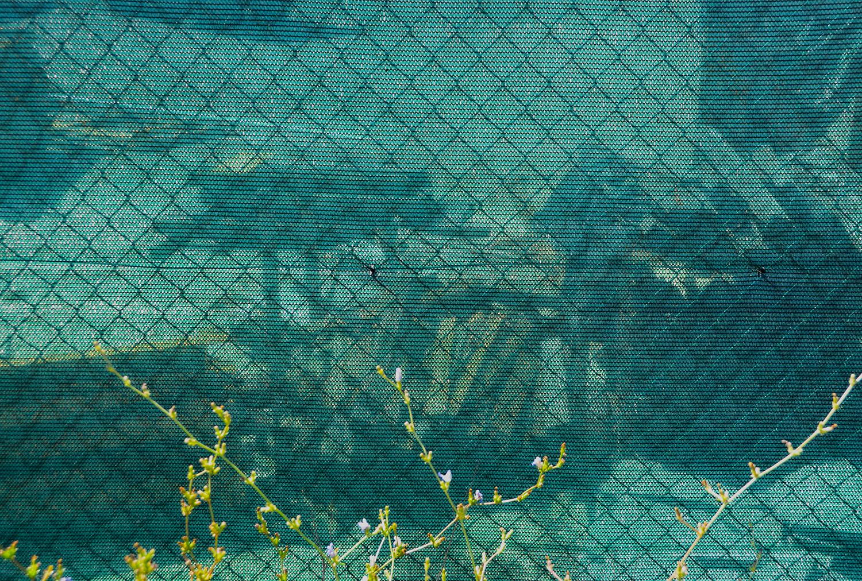 x Loop 9 image 1 Summer 2012 Santini lumber yard behind wire and green mesh.jpg