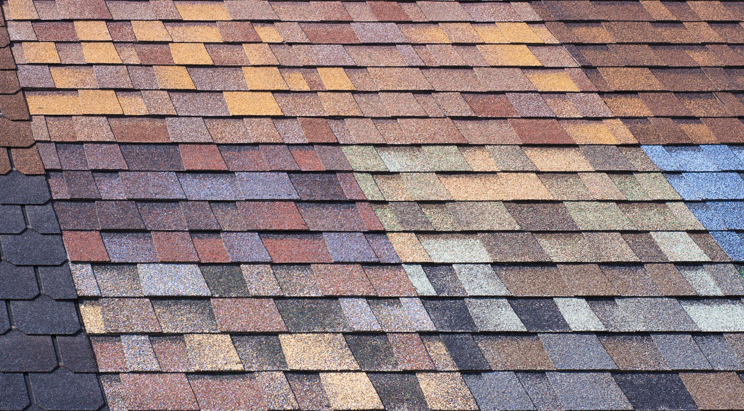Roof+Inspection.JPG