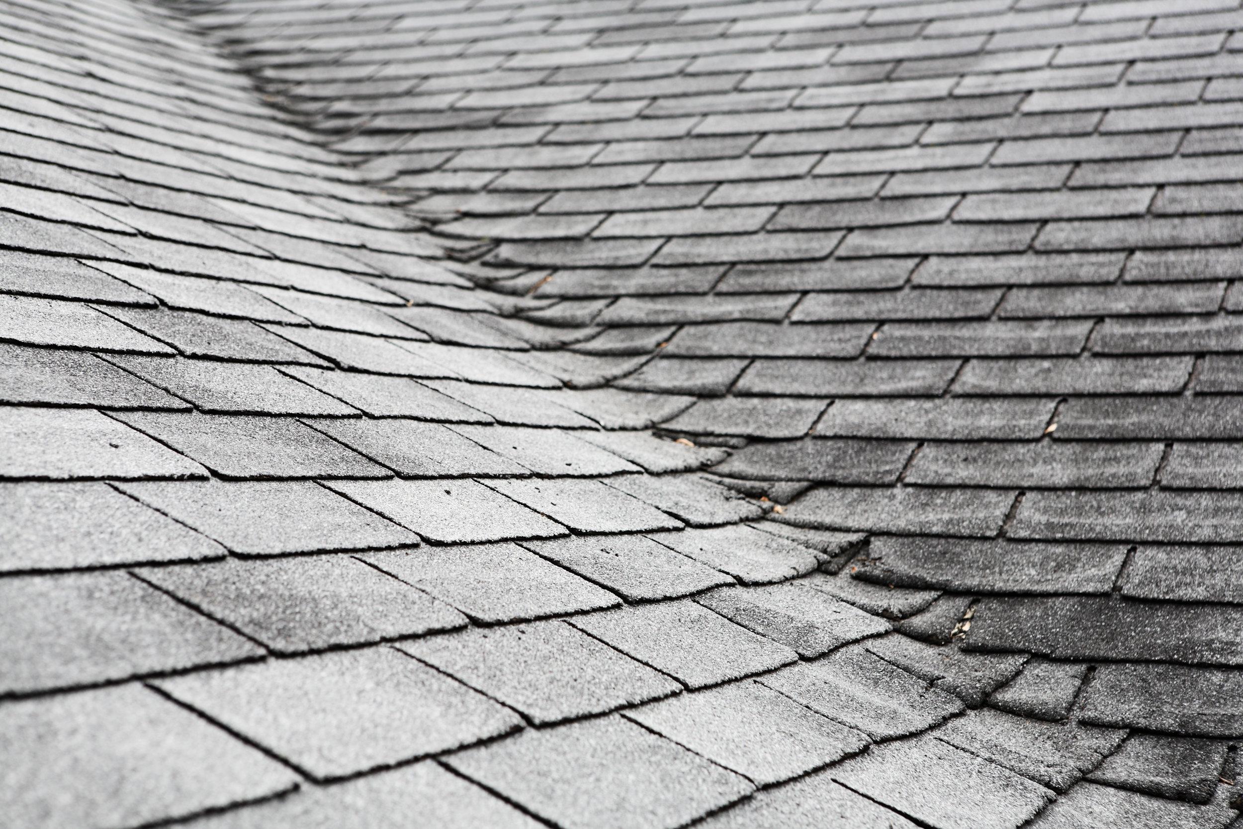Maxx Roofing Mold on Roof.jpeg