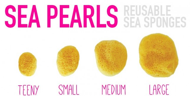 head-seapearls_resized-645x325.jpg