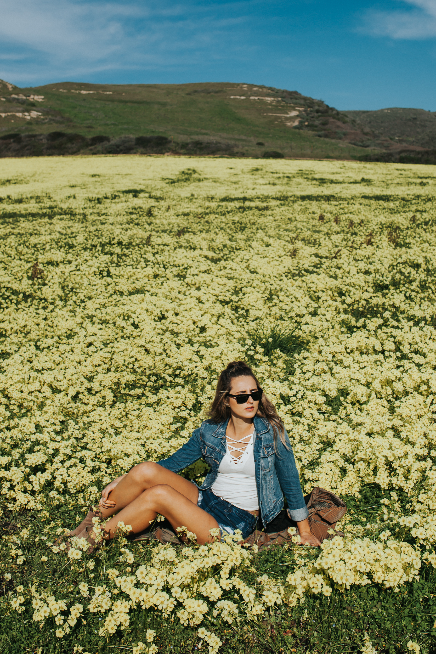 yellow flower field santa cruz beaches