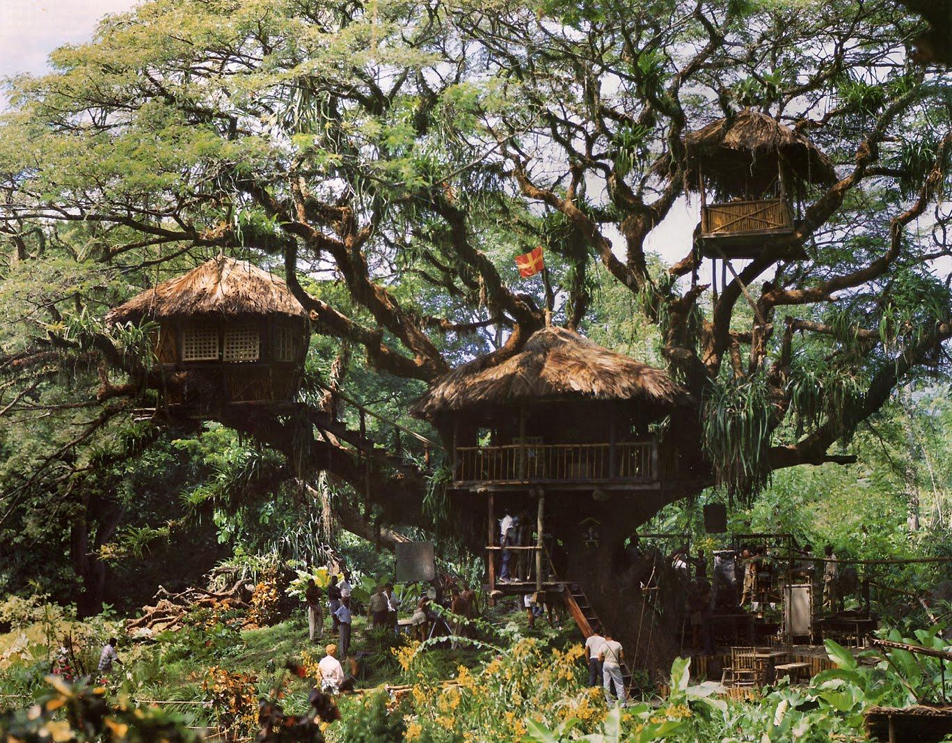 "The Disney Movie ""Swiss Family Robinson"" Treehouse"