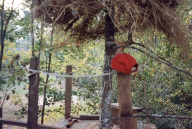 My Swiss Family Robinson Treehouse