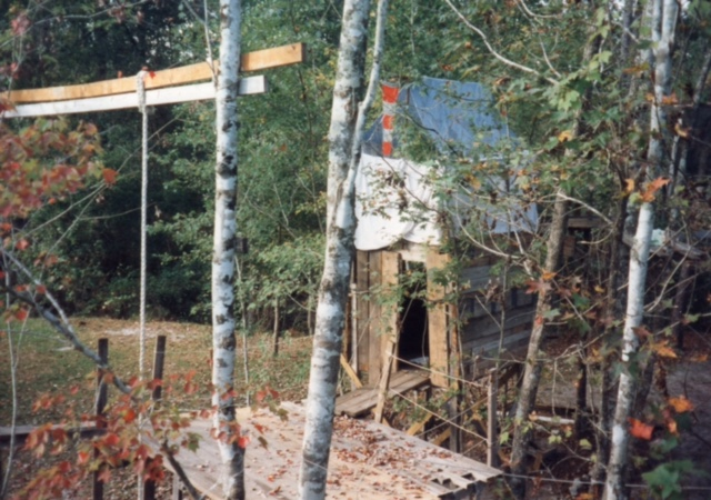 Main Treehouse and Climbing Rope
