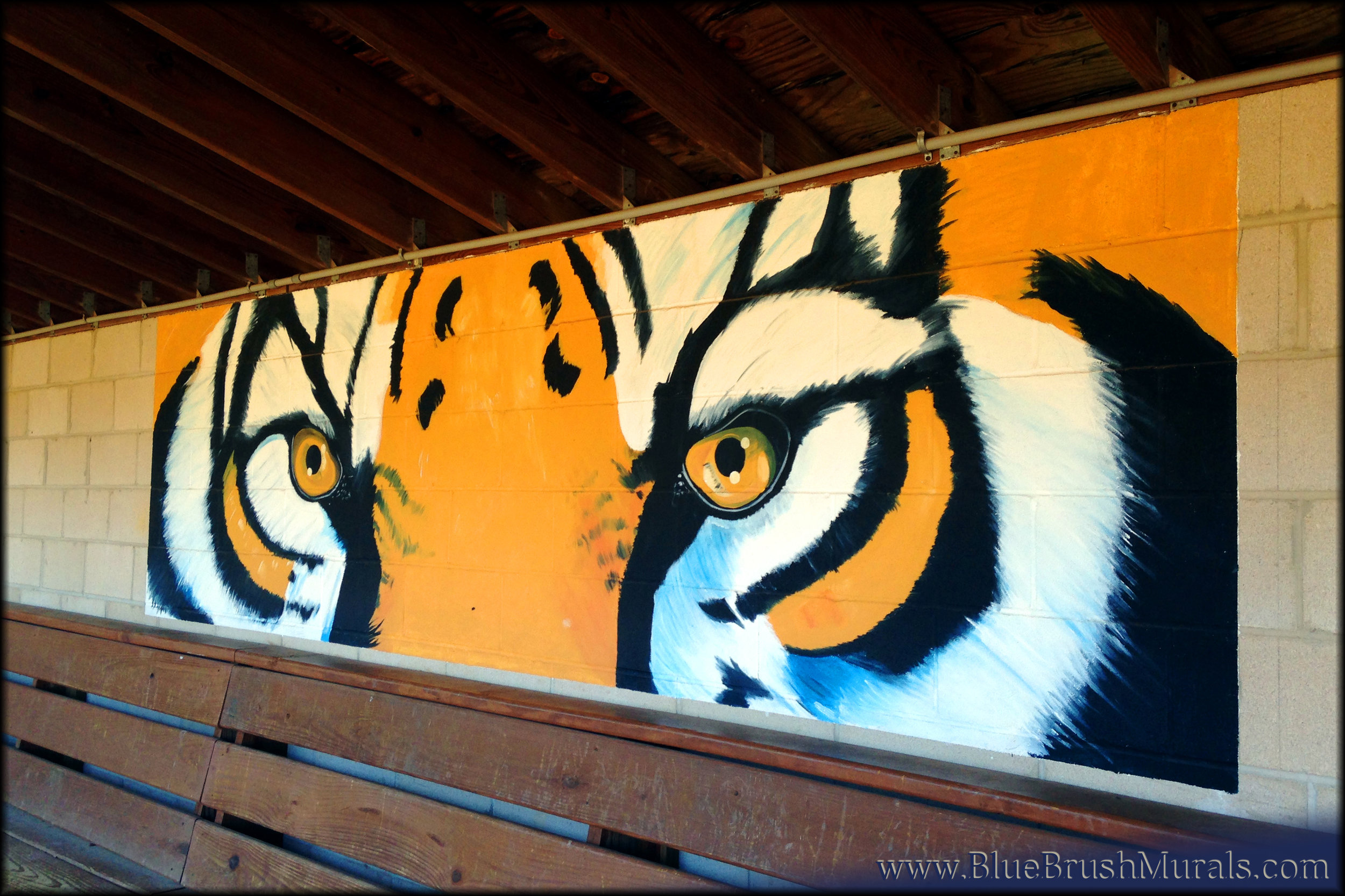 Bubs Tiger (wm).jpg