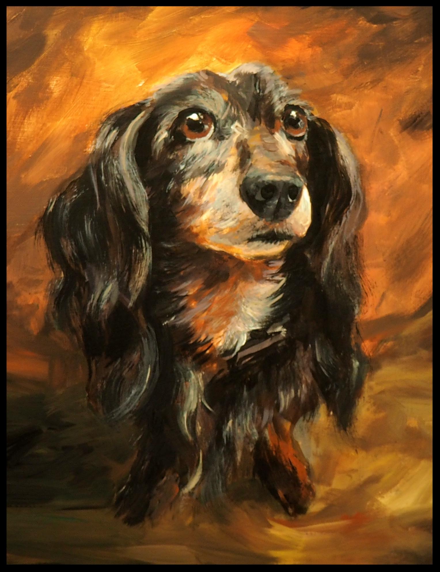 Amanda Dog Commission.jpg