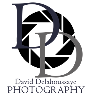 Logo_DD_WithName_Blue_Small.png